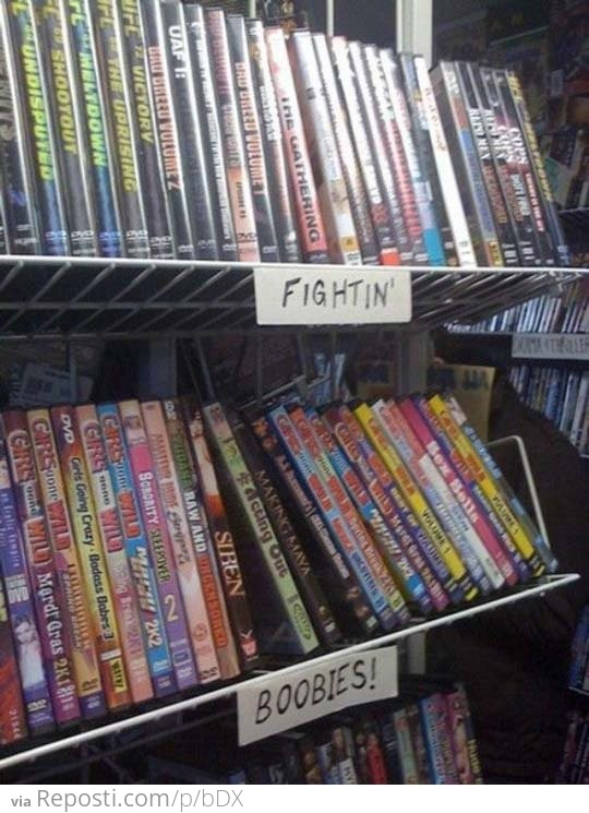 Movie Store Sections