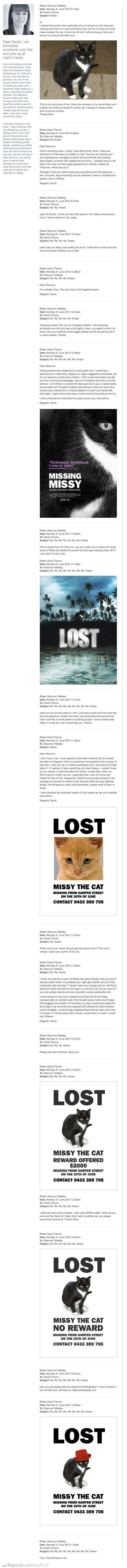 Missy The Missing Cat