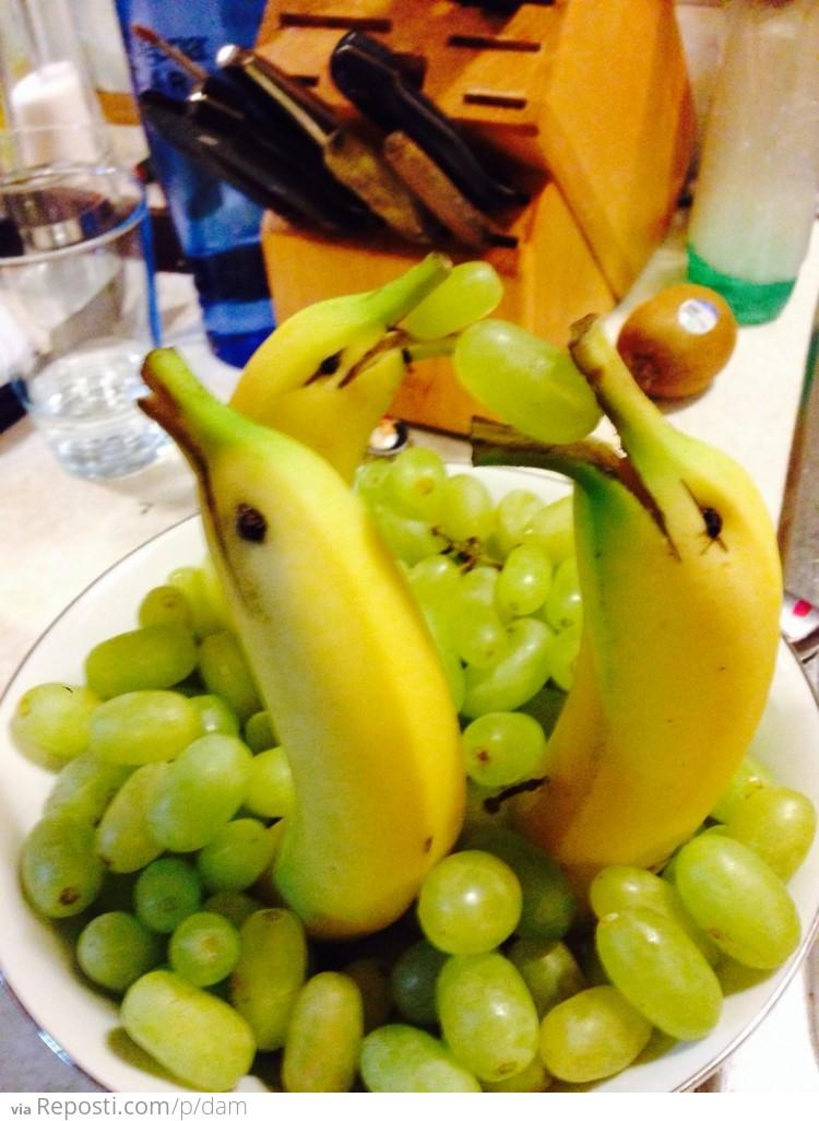 Как сделать дельфина с бананами