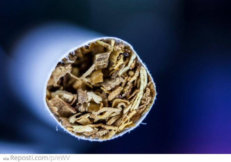 Cigarette Closeup